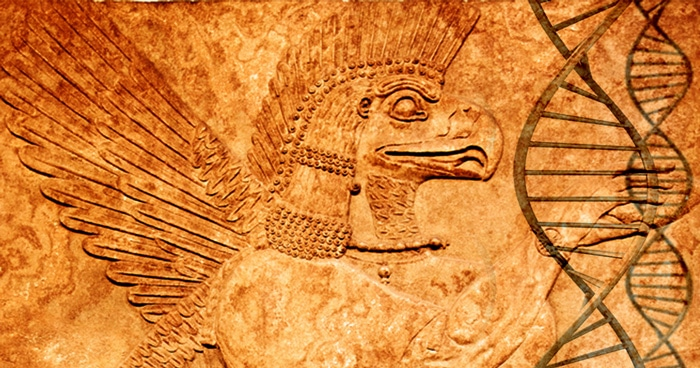 The Role of Sumerian Aliens on Humanity - Annunaki  org